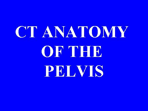 Ct Anatomy Of The Pelvis